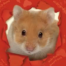 Humphrey the Hamster