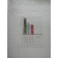 Leo's bar graph.