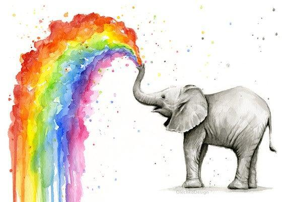 water colour rainbow elephant
