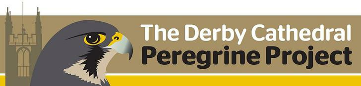 Watch the Peregrine Falcons LIVE at Derby Cathedral following the link below: