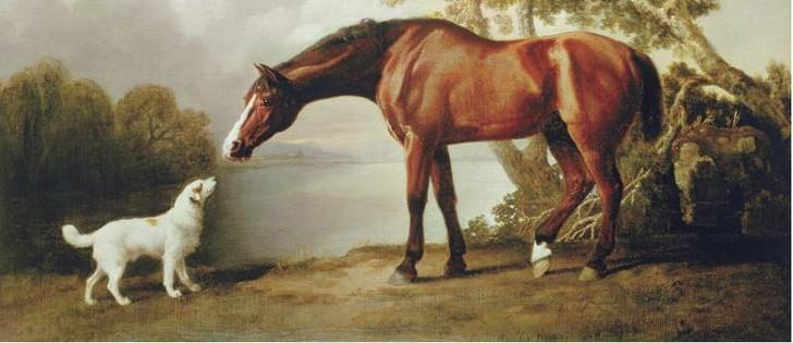 George Stubbs oil painting
