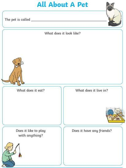 Care Instruction Poster - simpler unlined boxes