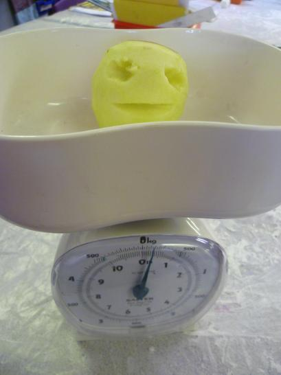 We weighed him first. How much would he lose?