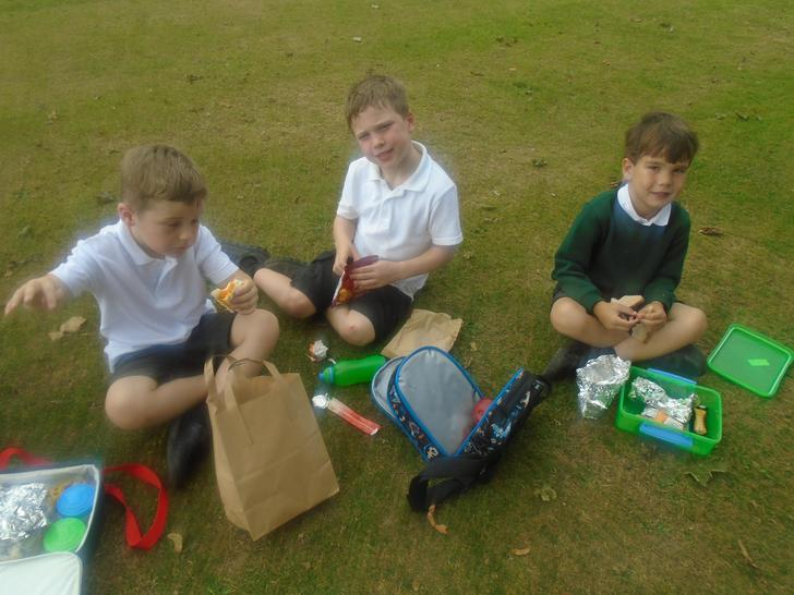 Yummy picnic