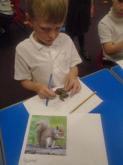 Creating a clay squirrel