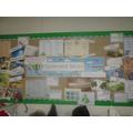 Our Splendid Skies project display