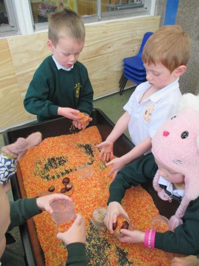 Using Autumn coloured rice