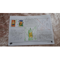 Lucy's sun safety leaflet.