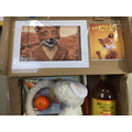 A selection of our book boxes for World Book Day