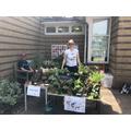 Lovely plant stall