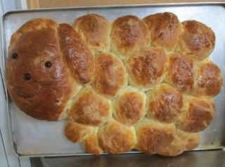 Sheep bread