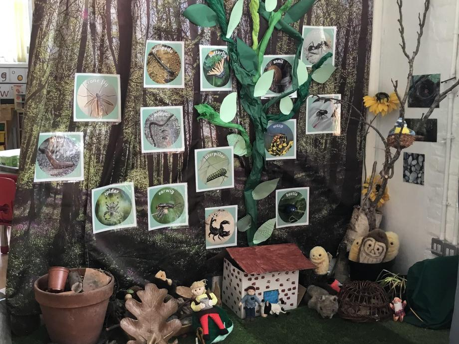 We are learning about growth. We are growing our own live caterpillars