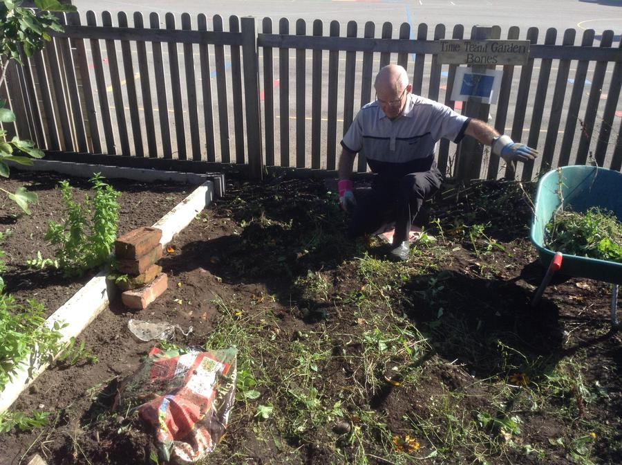 Mr P King of the compost heap looking for treasure