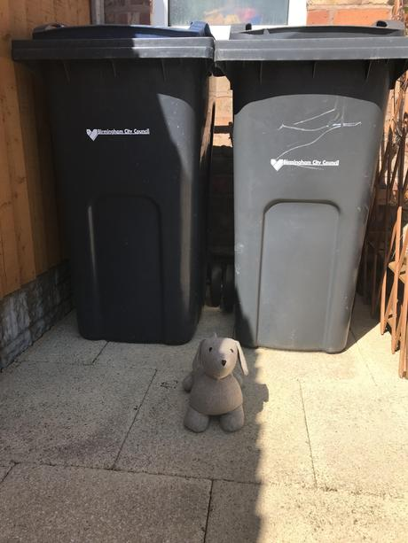 Teddy is IN FRONT of the bins.
