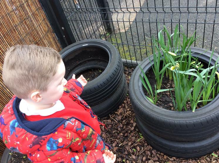 We found daffodils!