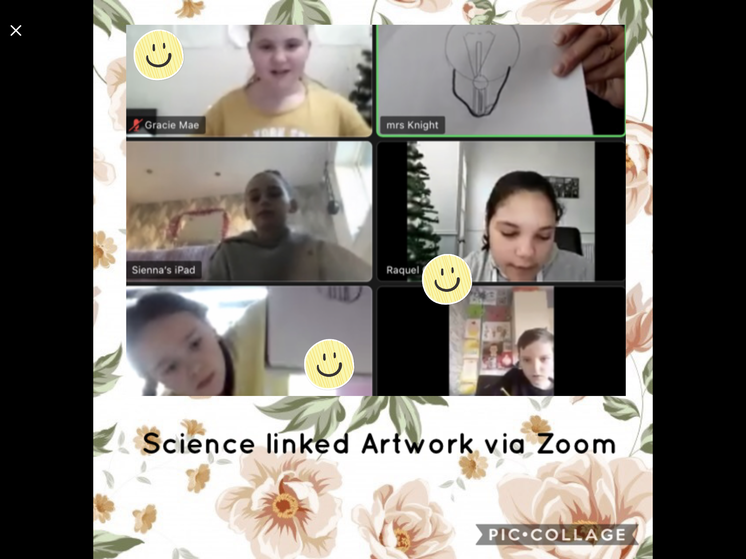 Science and Art linked Zoom (Mrs. Knight)