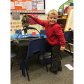 When Reception met Dudley the owl 🦉
