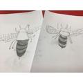 Sketching using light and dark tones