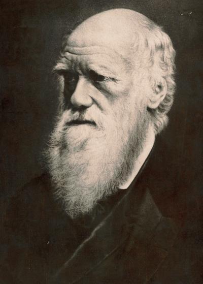 Year 6: Charles Darwin