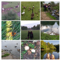 Hannah and Beth Nature Collage