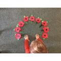 Poppies for Rememberance Day