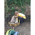 Making the Bug House