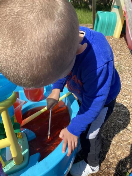 Great investigating Alfie!