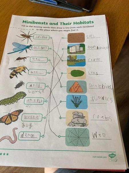 Great topic work Hayden!