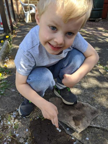 Sebastian bug hunting.