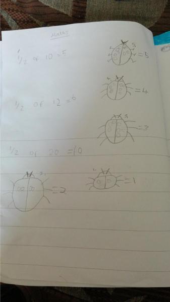 Robyn's fantastic halving maths work!