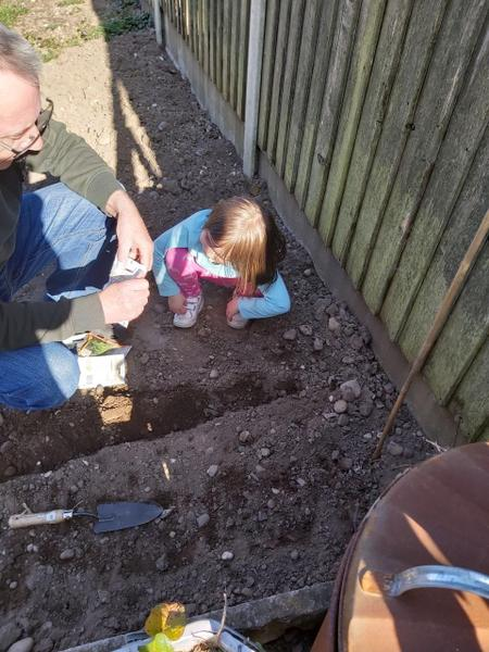 Lily-Mae planting with her family