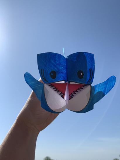 Origami Cootie Catcher / Fortune Teller.