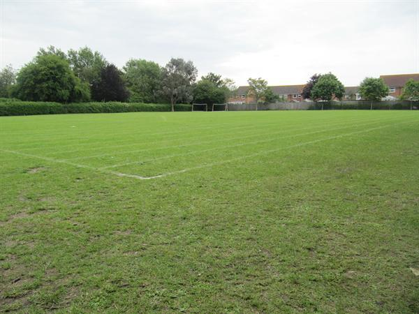 Playing / Sports Field
