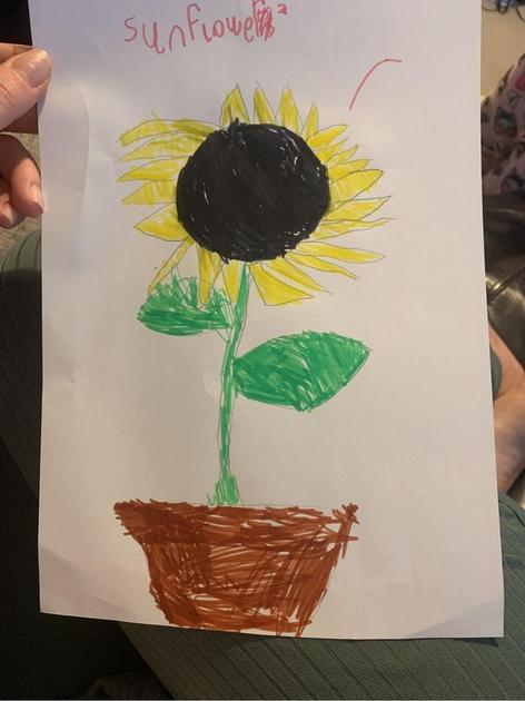 Esmai drew a sunflower, she knew all of its main parts.
