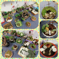 Year 5 Easter Prayer Gardens