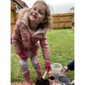 Violet F has been planting just like Jasper