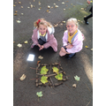 LOB and SC won the competition for who had the best natural symmetrical pattern