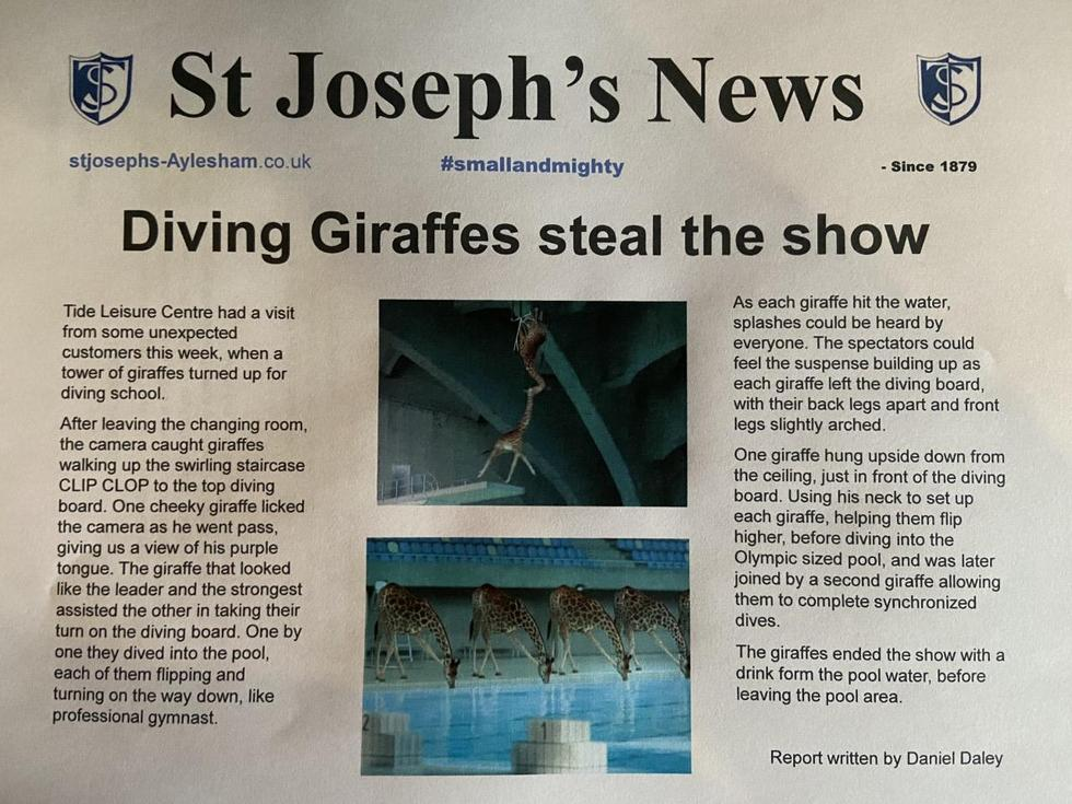 Fantastic Newspaper Article by Daniel