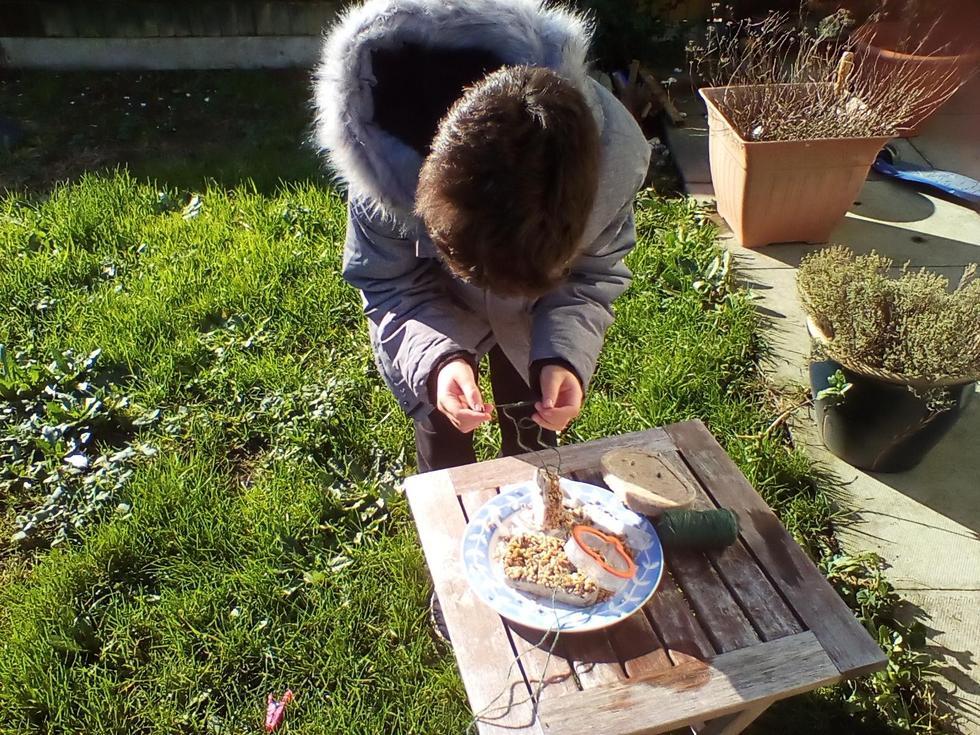 Making a bird feeder
