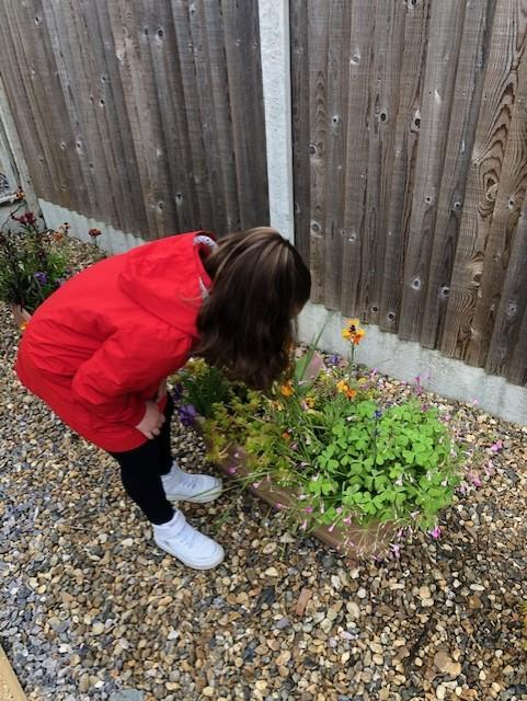 Visit to the Sensory Garden - smell