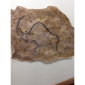 Ancient cave paintings