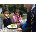 Eating cucumber from our garden patch.