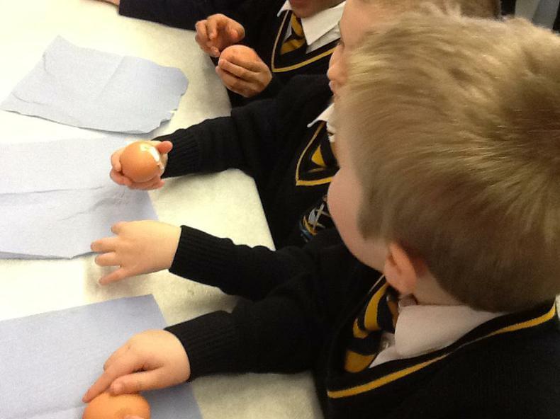 Peeling hard boiled eggs very carefully