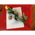 A rose for those who look after us