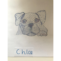 Chloe's spotty dog