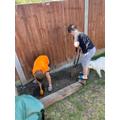 Archie gardening