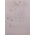 Annabel using sketching skills to create some artistic animals