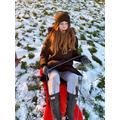 Ale sledging