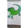 Ellis' iguana