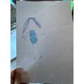 Drawing - Tabitha